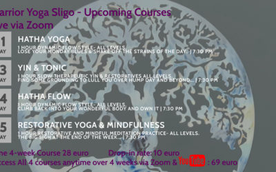 Upcoming Yoga Classes Online!